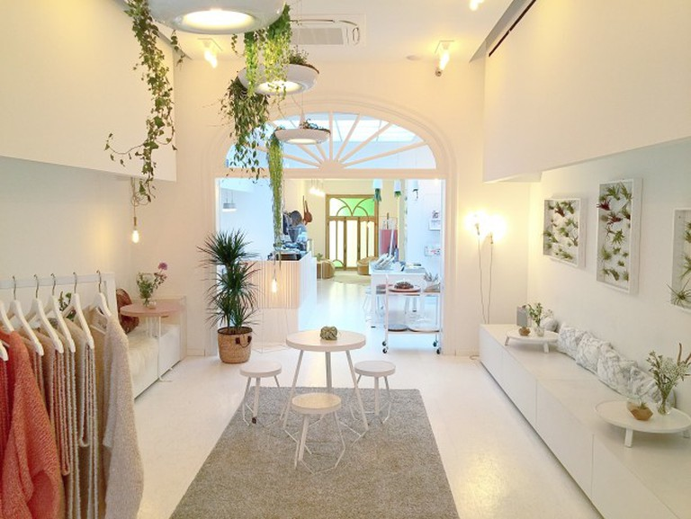 Scandinavian simplicity and floating Pyth plants at Thelma Coffee & Design | Courtesy of Thelma Coffee & Design