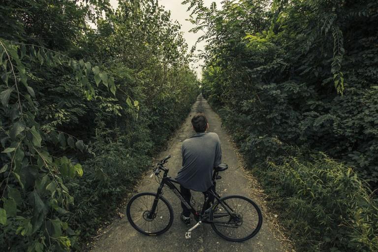 Bicycle path/Pixabay