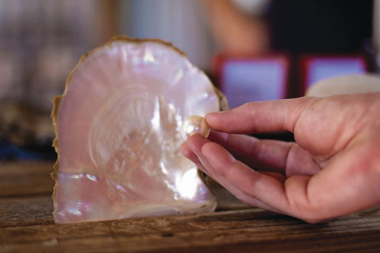 Broome pearl and shell | © Garry Norris Photography