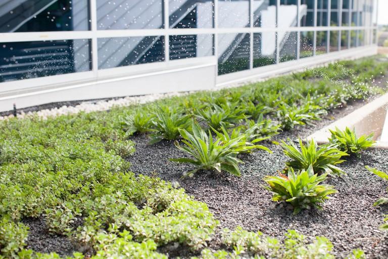 Citrix Raleigh - Rooftop Garden