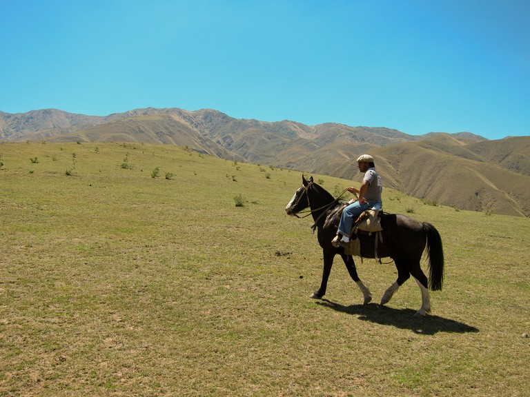 Horseback riding | © Miguel Vieira/Flickr