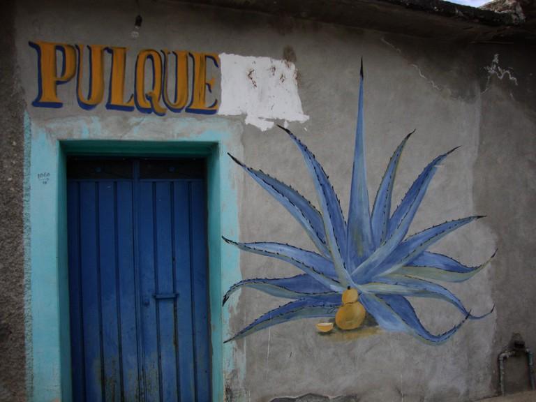Pulque | © foam/Flickr