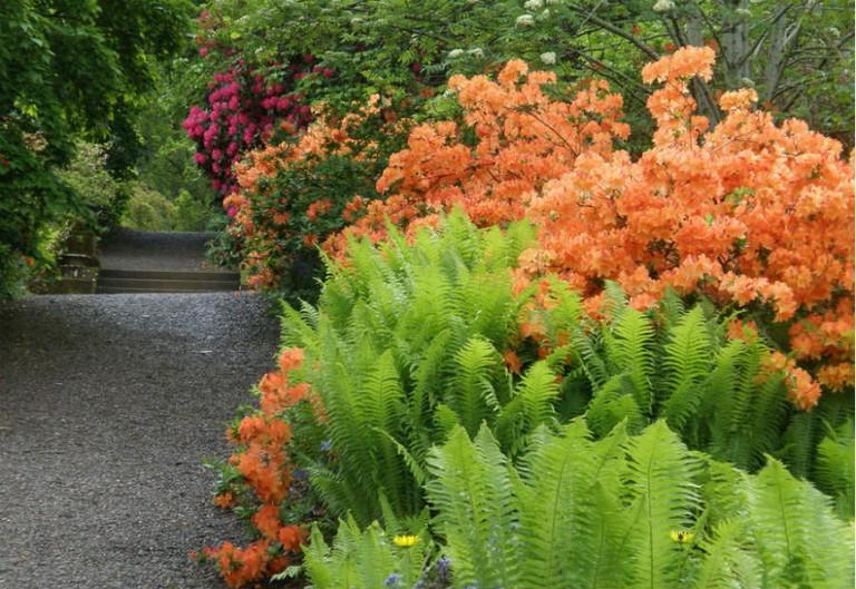 Dawyck Gardens | © Amanda Slater/Flickr