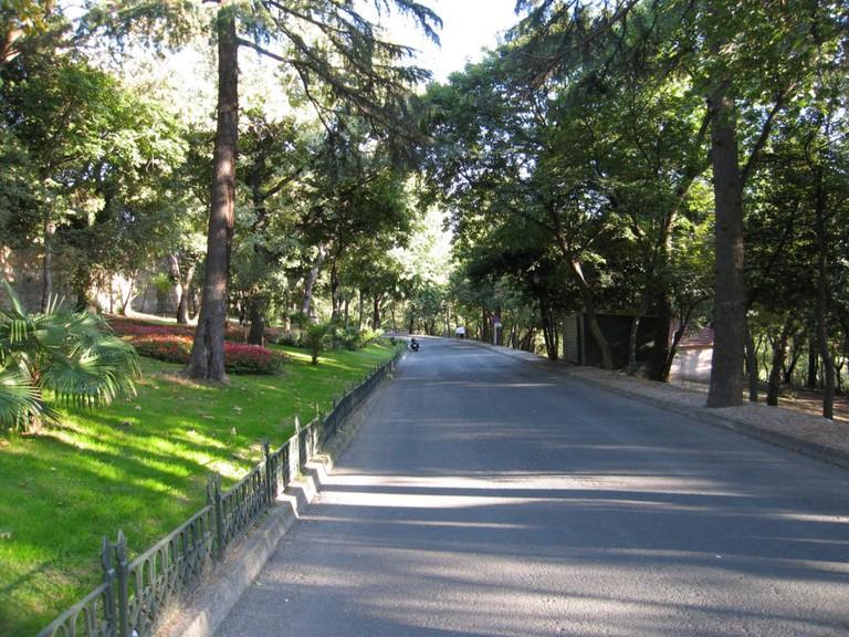 Yıldız Park/Wikimedia Commons