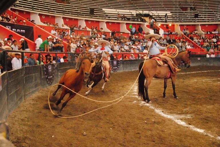 Charro wrangling a horse | © La Voz de la Charrería/Flickr