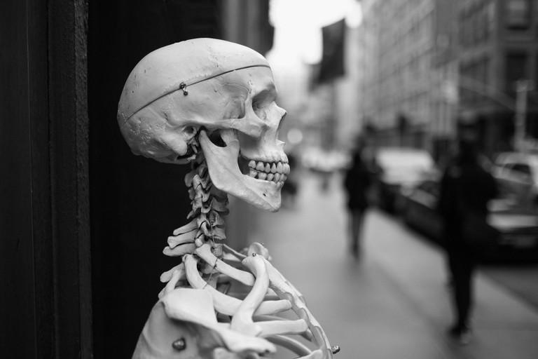 Skeleton | © Nick Harris/Flickr
