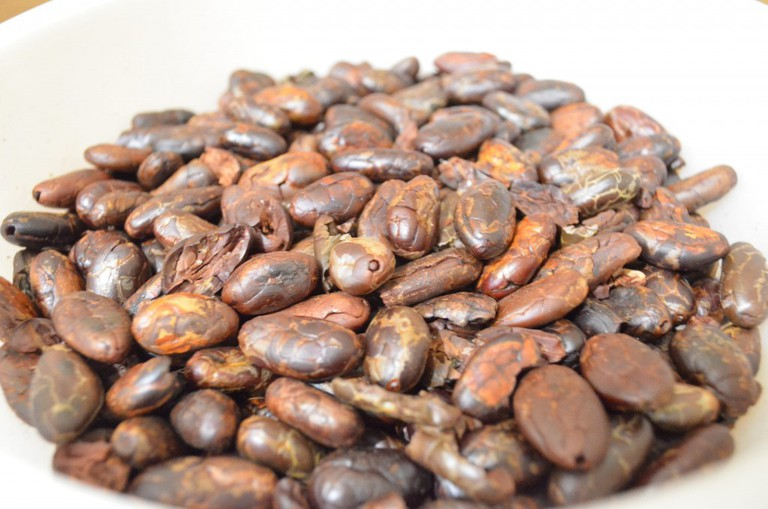 Roasted cacao beans | © James Leone Puno/Flickr