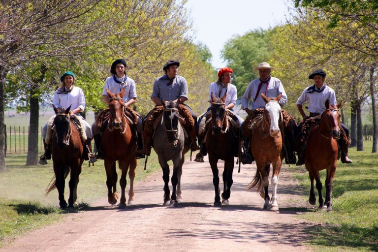 Horses in San Antonio de Areco / © Argentina Travel/Flickr