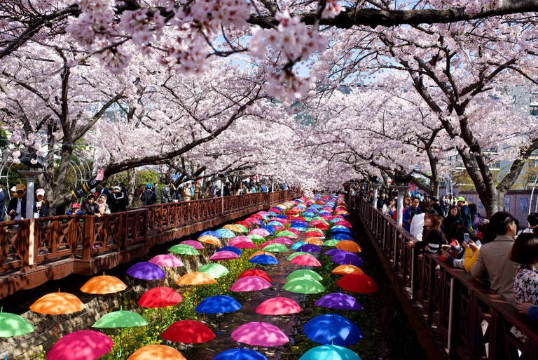 Jinhae Gunhangje Festival | © Gadjo Dilo / Flickr