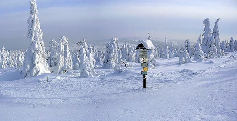 Velka Destna, the highest peak in Orlicke Mountains / ©Bretislav Valek / Wikimedia Commons