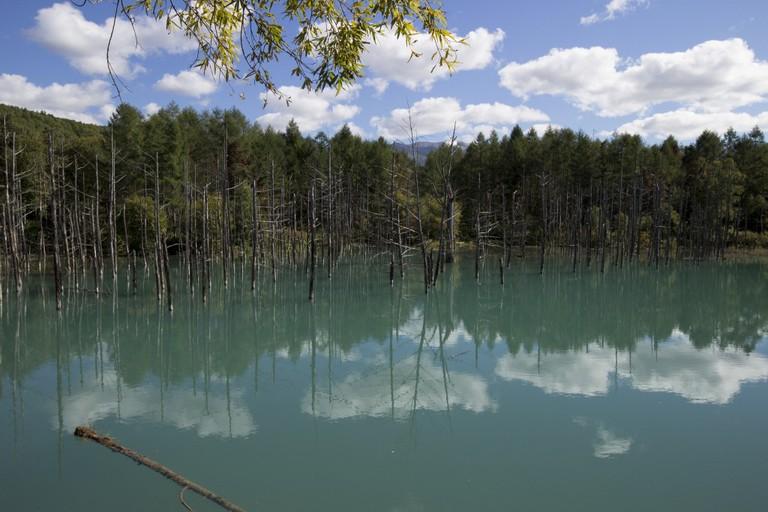 Blue Pond   ©ray.k / Flickr