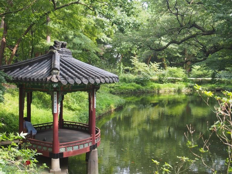 Changdeokgung Secret Garden | © pixabay