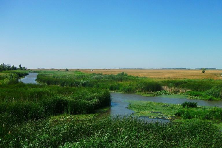 Hortobágy River, Hungary 01