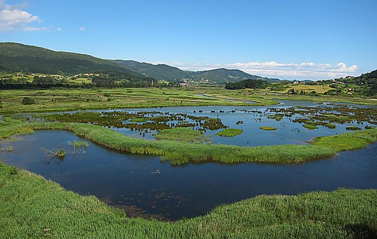 Urdaibai Biosphere Reserve, Spain   UrdaibaiBirdCenter / Wikimedia Commons