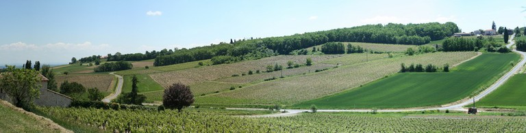 The vineyards of Tarn in the south-west of France are a great place to discover underrated wine | © Lloyd Morgan/Flickr