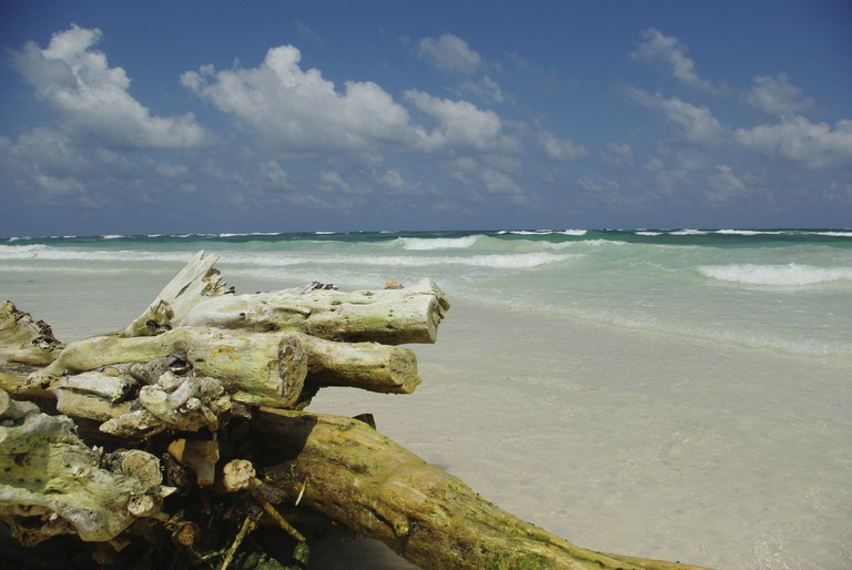The beaches in Tulum are stunning   © Stopardi/Flickr