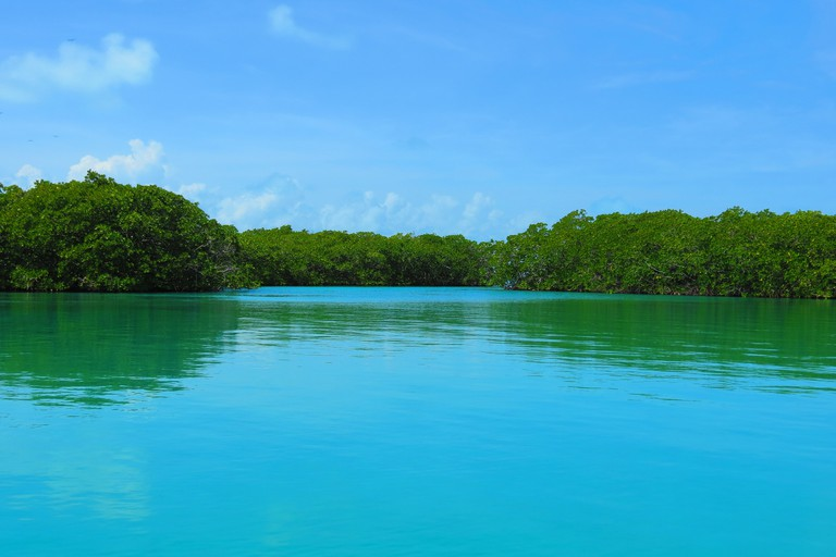 Sian Ka'an Biosphere Reserve   © Lara Danielle/Flickr