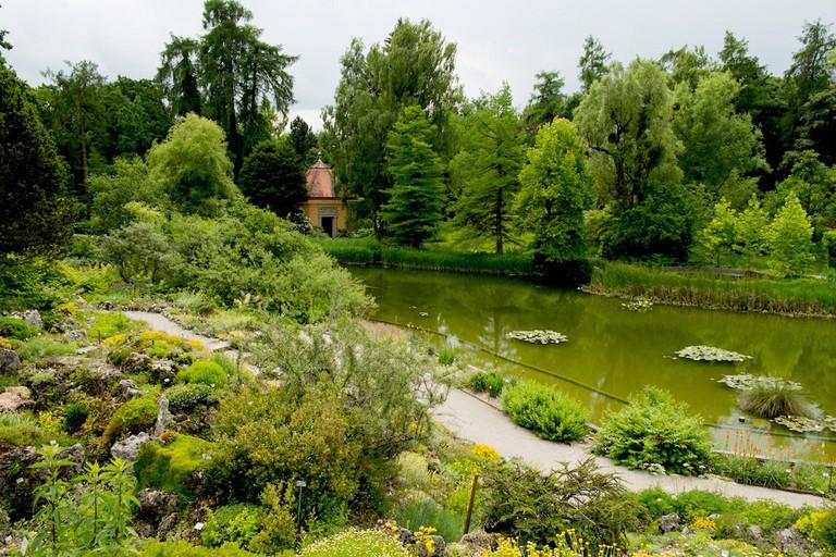 Alpine Garden at the Botanischer Garden © Ben Garrett
