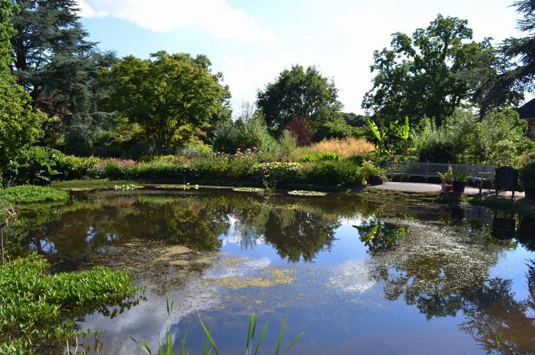Bristol Botanical Gardens | © Nick Sarebi | Flickr