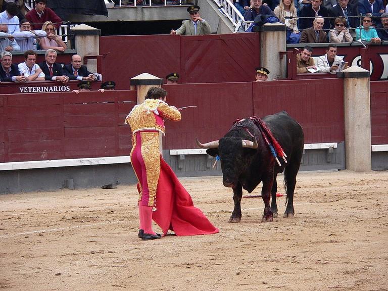 See a bullfight in Madrid  © Manuel González Olaechea y Franco/Wikipedia