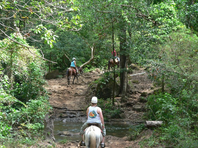To the zip line platforms via horseback