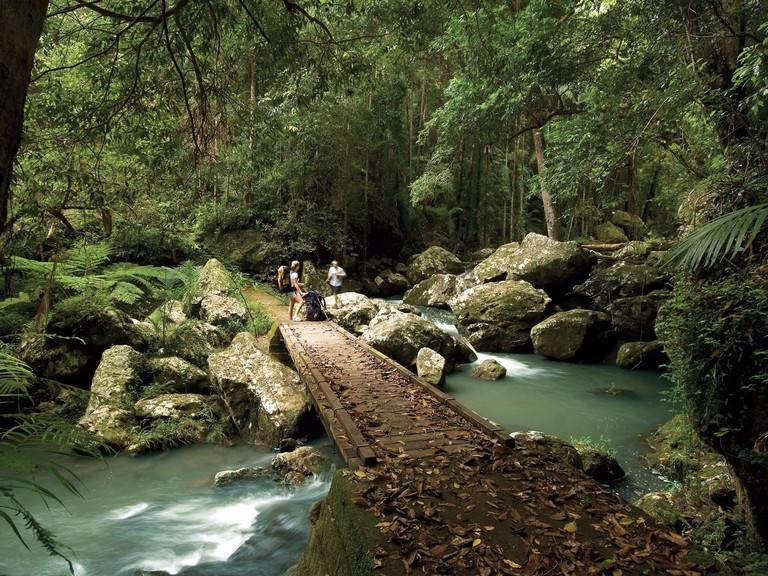 Kondalilla National Park