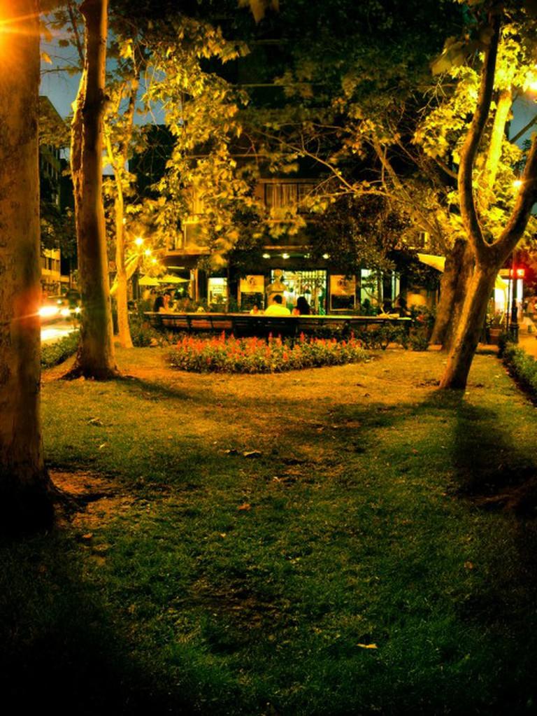 Rosas at night
