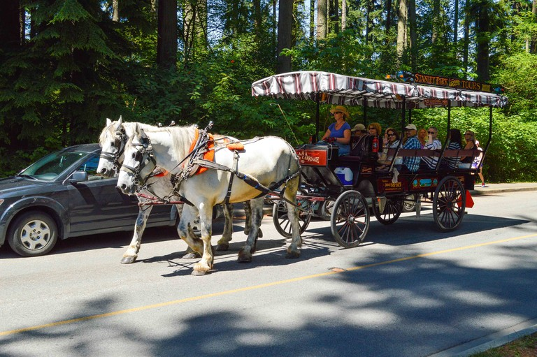 Stanley Park Horse Drawn Tour