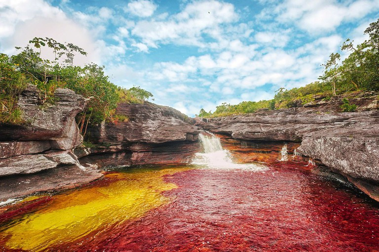 Caño Cristales, Colombia | © Mario Carvajal/WikiCommons