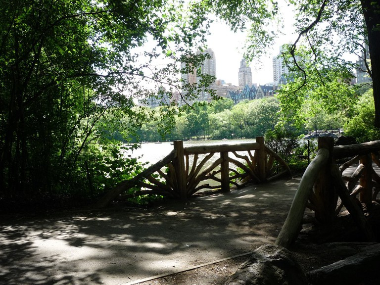 The Ramble at Central Park