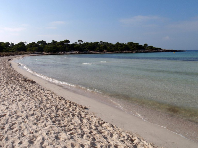 "<a href=""https://upload.wikimedia.org/wikipedia/commons/e/ec/Menorca_-_Arenal_de_Son_Saura.jpg"">Son Saura   © Daniel Lobo/WikiCommons</a>"