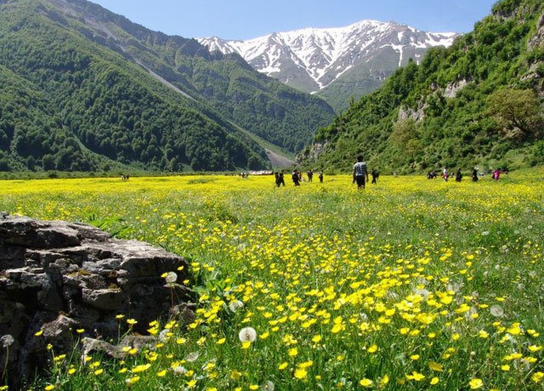 Dohezar Valley is carpeted in wild flowers in the spring | © Sajjadi Livejournal / Flickr