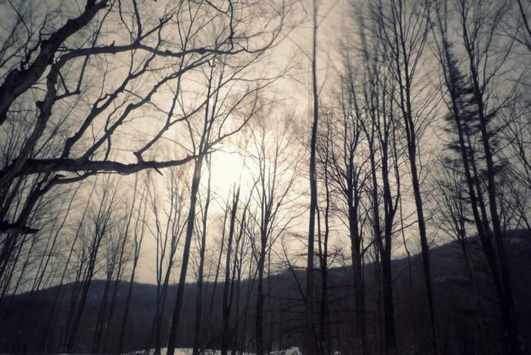 Dorset, Vermont   © Peter Sheik/Flickr