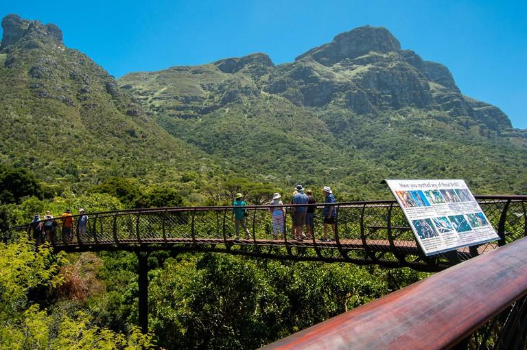 Kirstenbosch National Botanical Garden, Newlands