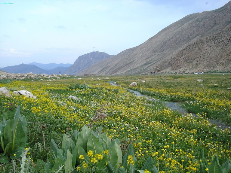 Lar Valley is best visited in the spring | © Mahdi Kalhor / Wikimedia Commons