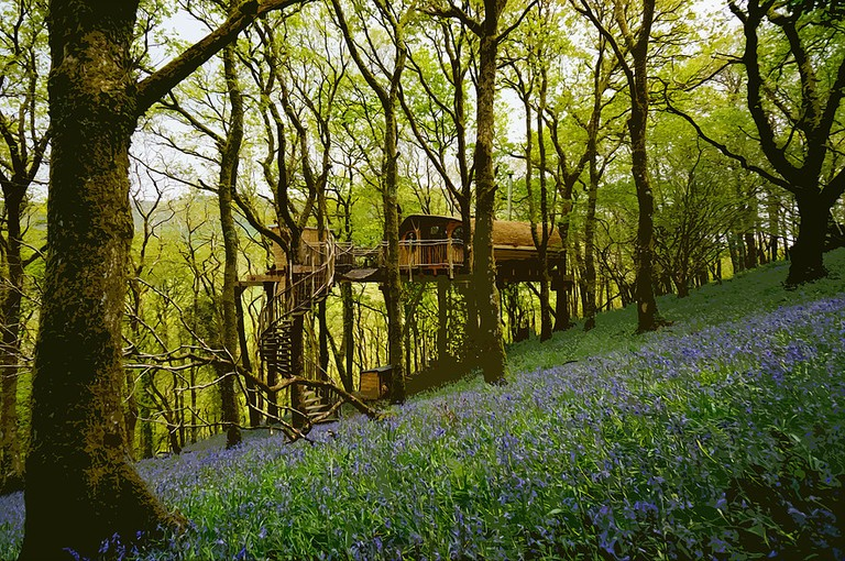 Living Room Treehouse in spring | Courtesy of Living Room Treehouse Experience