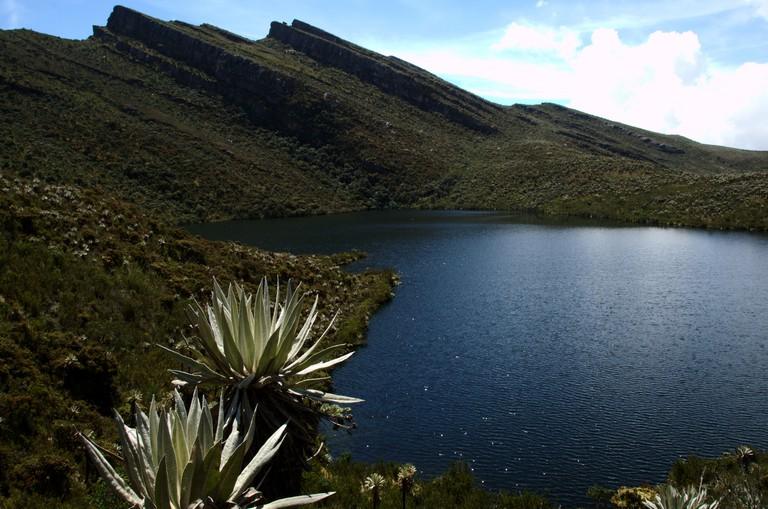 A beautiful lake in Chingaza National Park