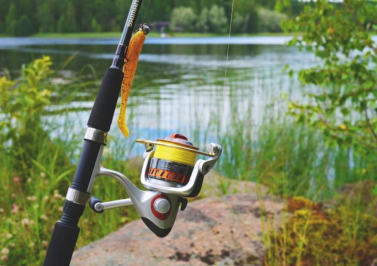 Fish on a fishing line | Snufkin / Pixabay