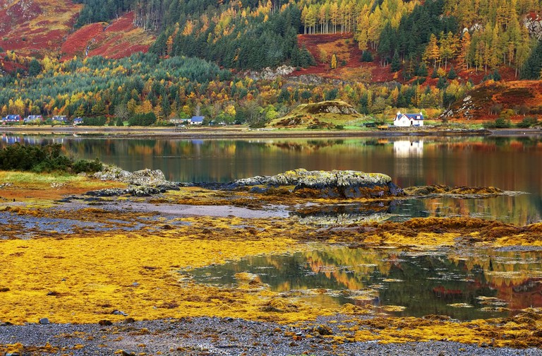 Autumn Colours In The Scottish Highlands, Scotland