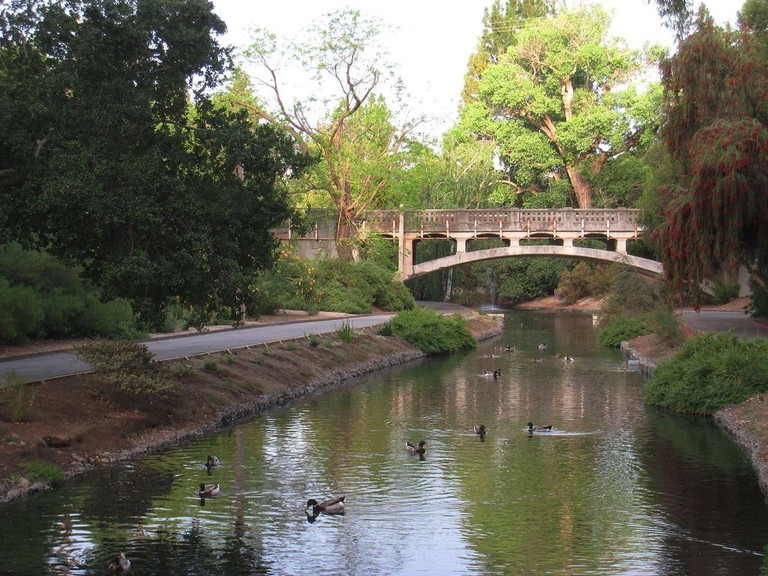 UC Davis Arboretum | Daderot / Wikimedia Commons