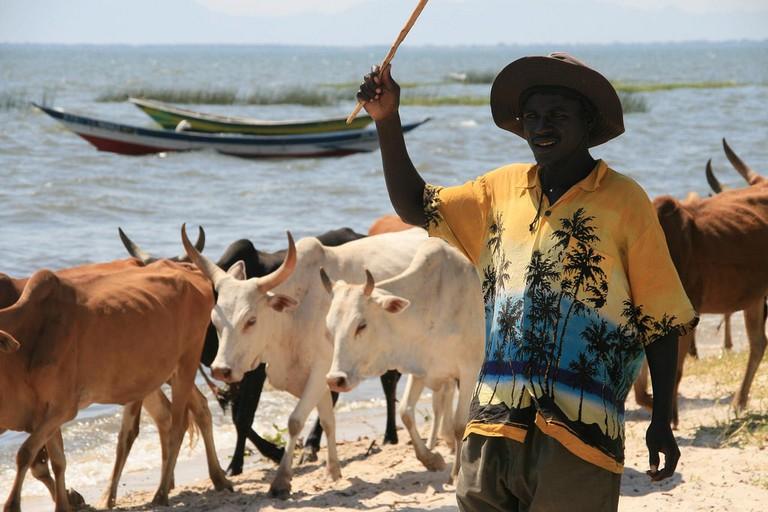 Subsistence farmer on Lake Victoria