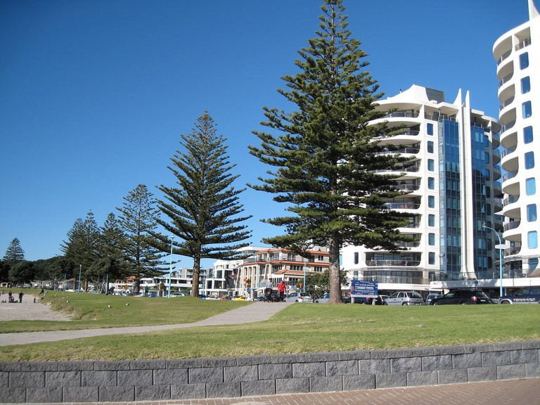 Oceanside Resort and Twin Towers, Mt Maunganui