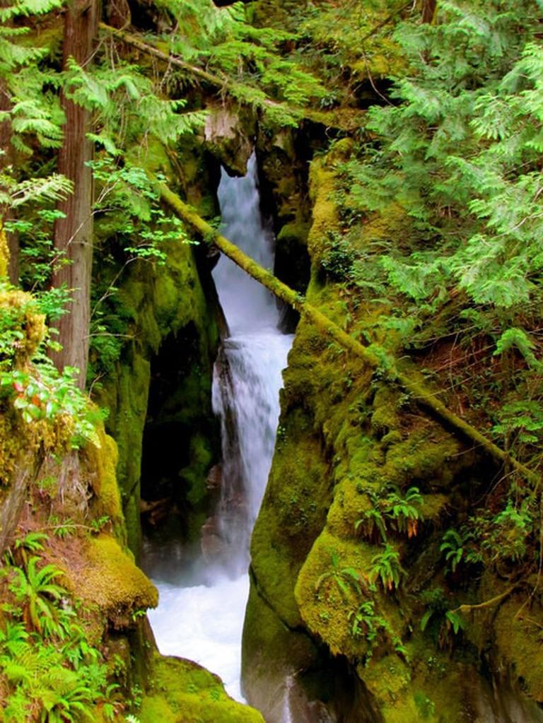 Ladder Creek Falls   © Jeff Gunn / Flickr