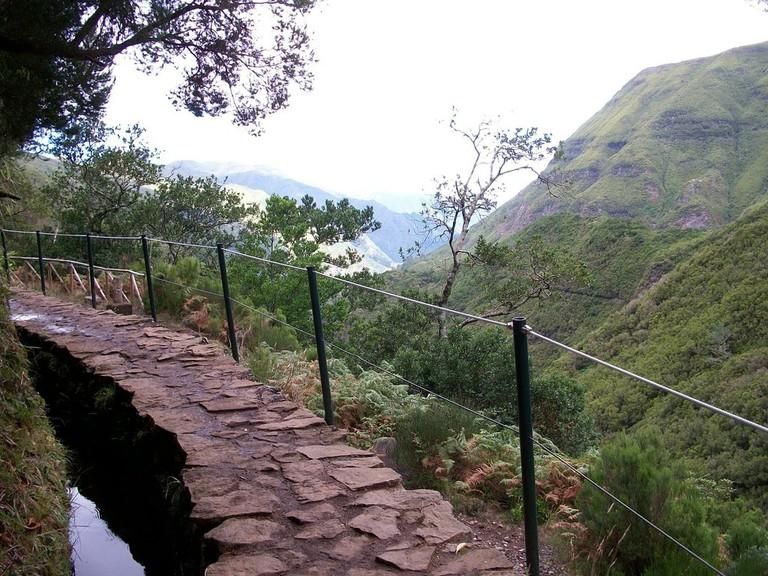 https://pixabay.com/en/portugal-madeira-levada-hiking-1702717/