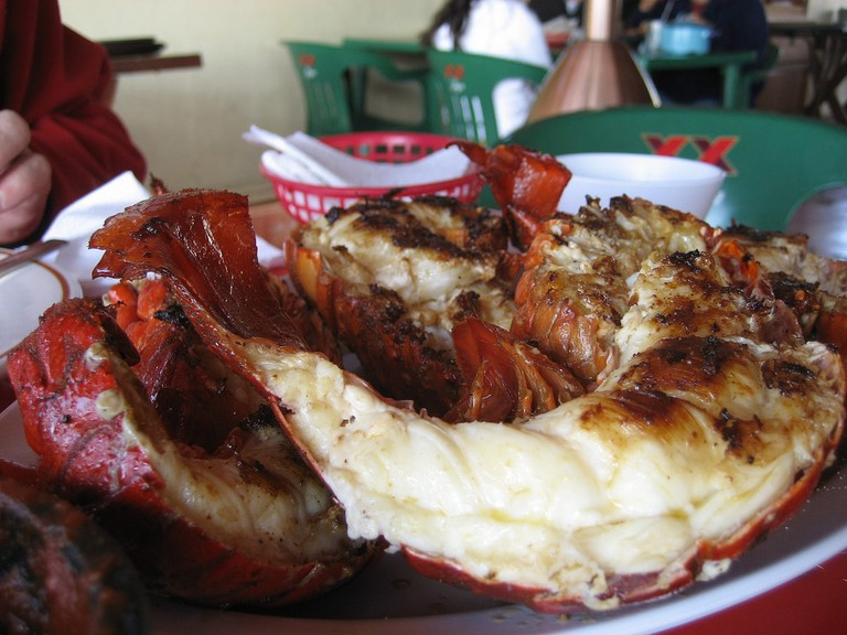 Pan-fried lobster