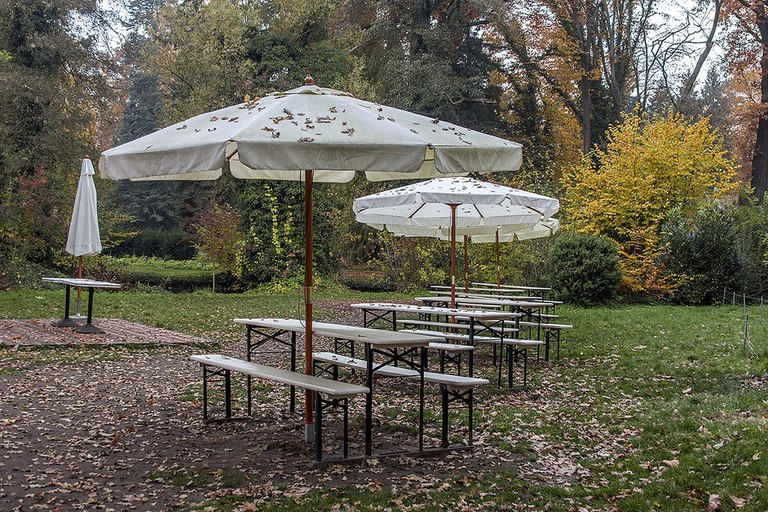 Cafe Eden Outdoor Seating in Autumn