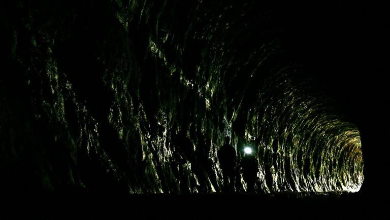 Glowworm Tunnel