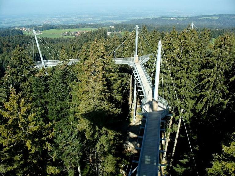 540_m_Baumwipfelpfad_in_luftiger_Höhe_-_panoramio