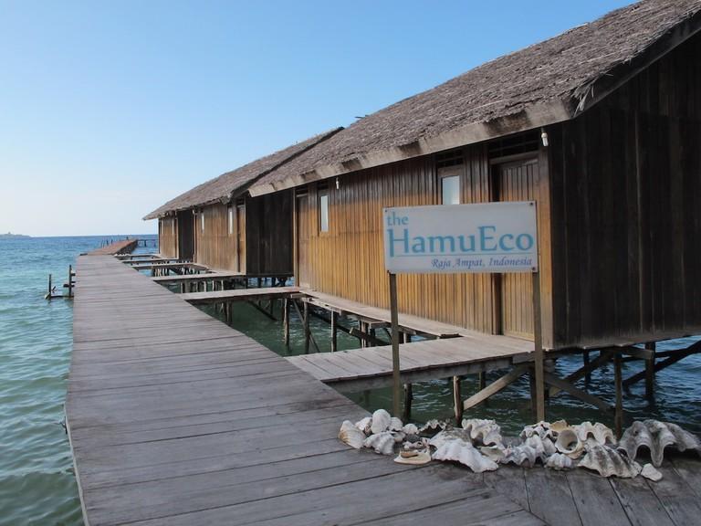 HamuEco, Papua Barat