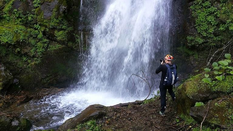 Mtirala_national_park